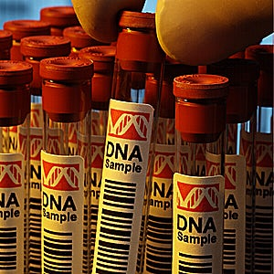States Continue to Oppose DNA Testing in Death Penalty Appeals, Attorneys Ask Why Don't They Want to Learn the Truth?