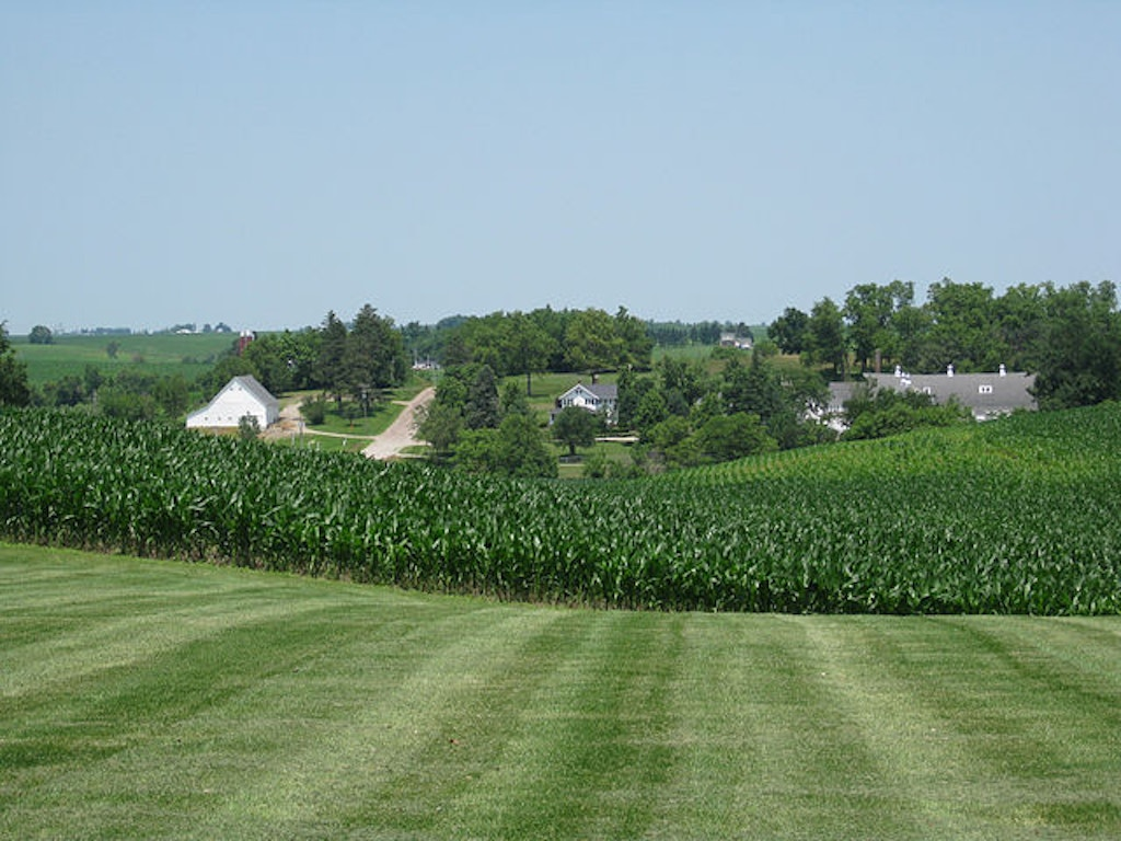 Cornfield, Newton, Iowa. Public domain photo.